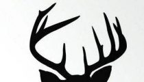 Stag Blackboard – new trophy for your house !
