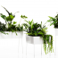 Interior Planters Inspiration